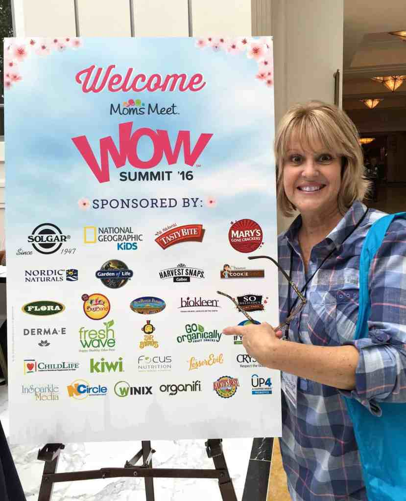 wow-summit-sponsors
