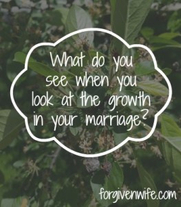 Do you allow the fruit from seasons past to cloud your appreciation of the growth in your marriage?