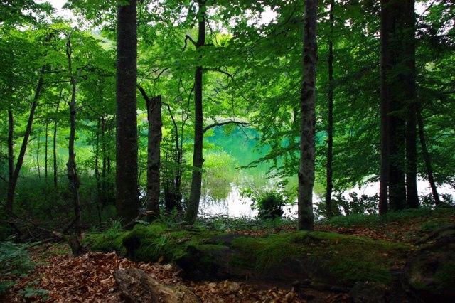 плитвицкие озера отзывы