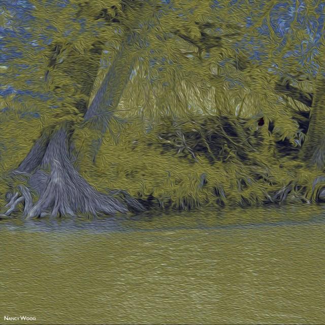 2014-FOTOSEPTIEMBREUSA_Calendar_Nancy-Wood_Journeys-Exhibit_Huisache-Grill