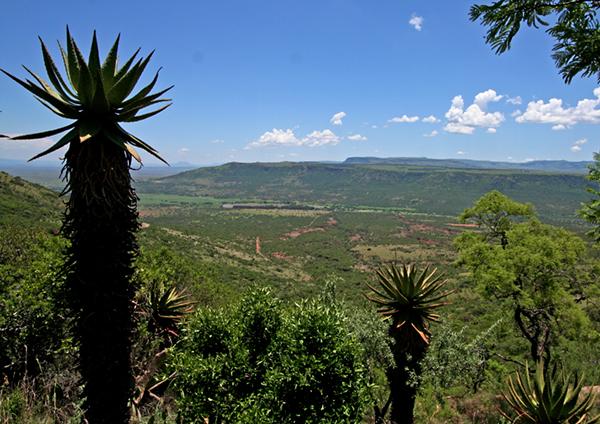 Northern KZN Landcape