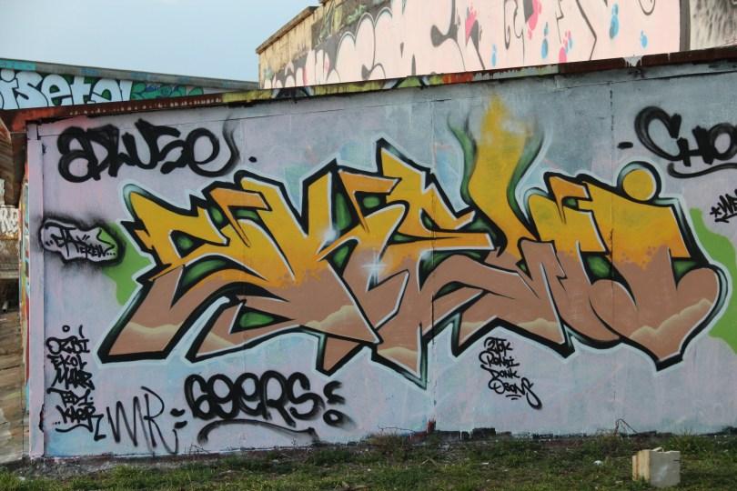 graffiti Dijon_tanneries_Skewy (1)
