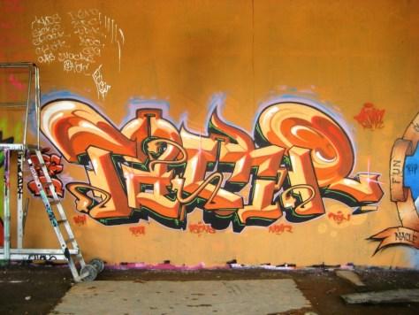 mai 2013_graffiti_besancon_rip_Tew (5)