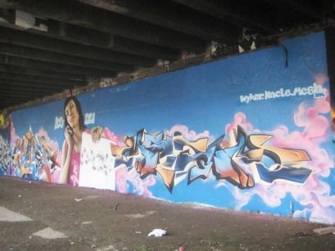 besancon-fevrier 2014-graffiti- Wyker, Nacle, Mesh (6)