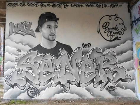 septembre 2014 Sener, Nacl - graffiti - besancon  (2)
