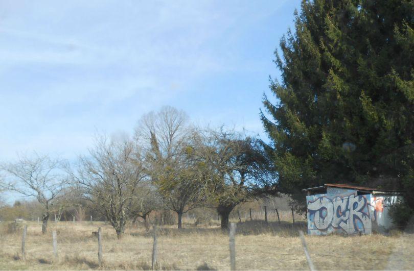 OCR graffiti franche-comte mars 2015