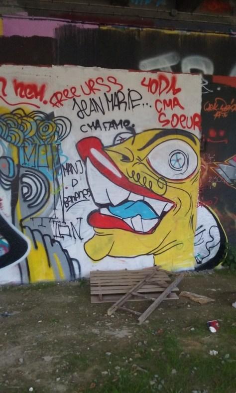 graffiti - octobre 2015 besancon arènes (2)
