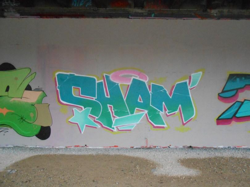 besancon graffiti 2016 SHAMAN, BASIK (1)