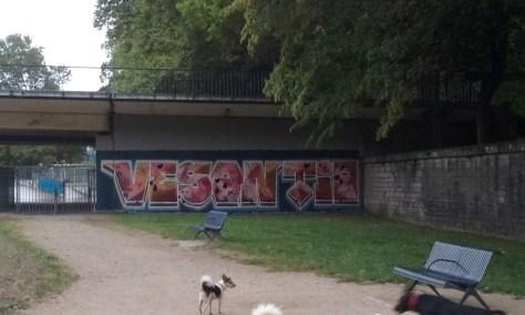 vesontio - graffiti besancon 2016 (2)