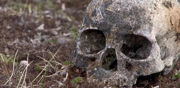 human skull on kekerten island surface - nunavut