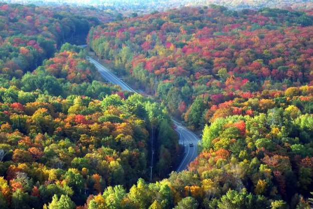 fall colors, dorset tower view, hwy 35, ontario, pic 2