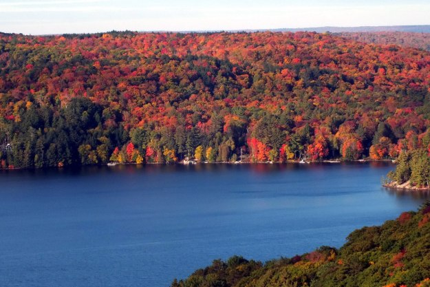 fall colors, lake of bays, ontario, pic 1