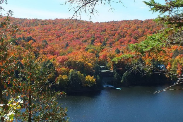 fall colors, oxtongue lake, ontario, pic 4