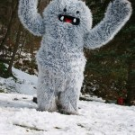 catskill-mountain-yeti-costume-2404 (1)