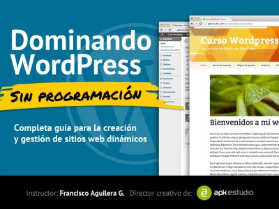 Dominando WordPress sin Programación