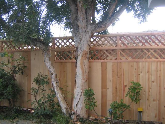 carpentry manhattan beach wood fence