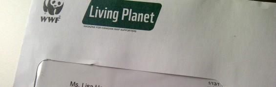 WWF Snail Mail