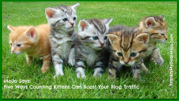 MoJo Says: Five Simple Ways Counting Kittens Can Boost Your Blog Traffic
