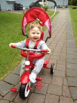 Small Of Radio Flyer 4 In 1 Trike