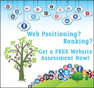 Web Assessment - SEO Ranking