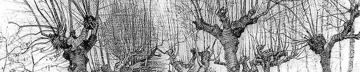 vanGogh-drawing1