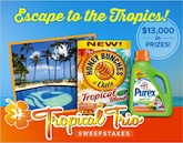 TropicalTrioSweeps_Final.2_165.094927