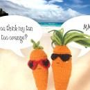Free Desktop Wallpapers HD carrots beach