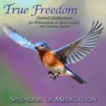 true freedom guided meditations cover