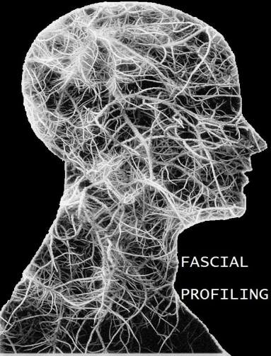 fascia-within-crainum