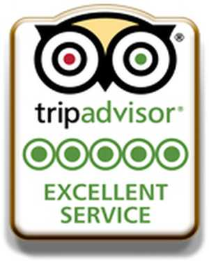 Trip Advisor Free Excellent Service Pins - US