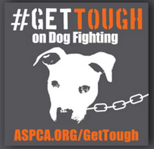 ASPCA #GetTough on Dog Fighting Free Sticker - US