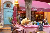 A Bouchon in the Old Lyon © French Moments