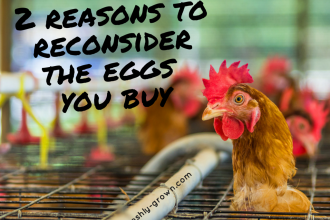 2 Reasons to Reconsider Eggs