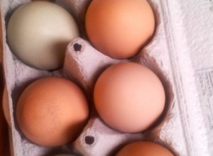 2 Ways to Dye Eggs Naturally | Freshly Grown