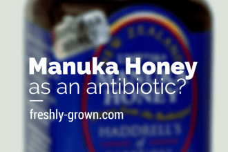 Why I Chose Manuka Honey Over Antibiotics for My 4-Year-Old #remedies #holistic