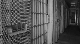 incarcerationboostpublicmentalhealth
