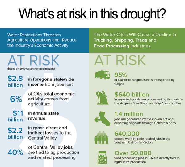 At RIsk In The Drought
