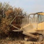 A bulldozer pushes over orange trees already dying because of a lack of water on Harlan Ranch in the International Water District northeast of Clovis. It is the latest of many such cheerless removals of permanent crops on Friant Division farms this year that have resulted from the zero supply of Central Valley Project allocated to Friant users by the Bureau of Reclamation. Harlan Ranch has pushed over 400 acres of trees out of 1,200 acres total.