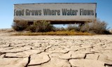 Valley Signs of the Drought