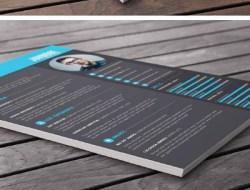 Free Resume / CV Template