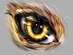 Beast Eye