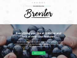 Breviter - Free Creative Blog Website Template