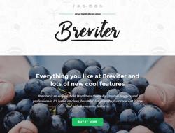 Breviter - Free Creative Blog Website Template