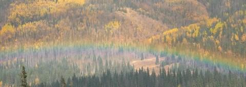 A bit of rain on Wolf Creek Pass afforded us a beautiful rainbow.