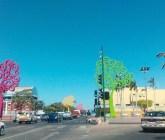 Cámaras de control de tráfico ofrecen mayor seguridad en Managua