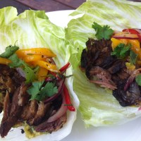 day twenty-two: pork carnitas
