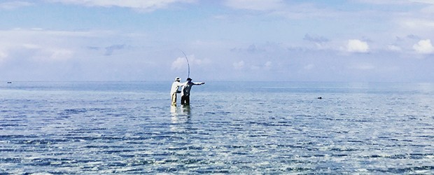 From the Field: Stalking Permit at Belcampo Lodge, Belize