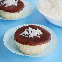 Coconut Vanilla Cheesecakes