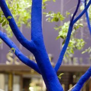 Blue Trees - Konstantin Dimopoulos