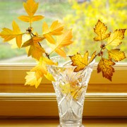 Fall Leaves In A Cut Glass Vase
